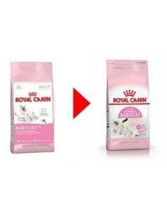 Royal Canin Babycat 1.5kg