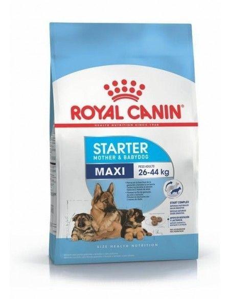 Royal Canin Maxi Starter 10kg