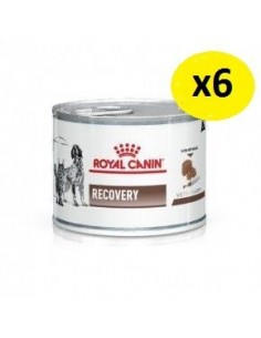 ROYAL CANIN RECOVERY 165GR 6 unidades